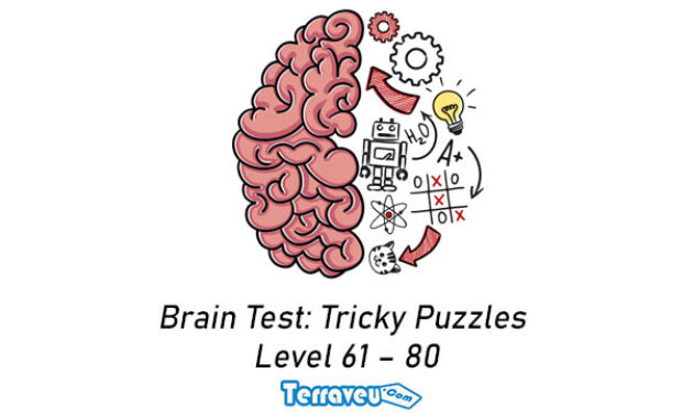 Brain Test Tricky Puzzles level 61 80